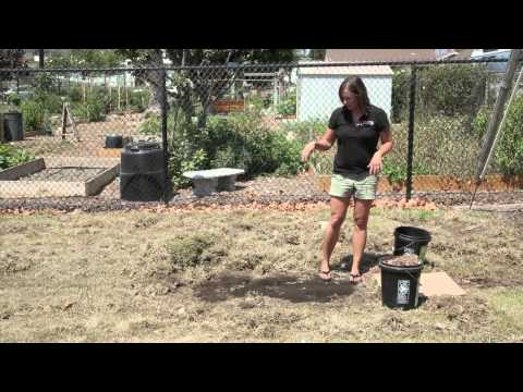 Simple Steps to Remove Your Lawn