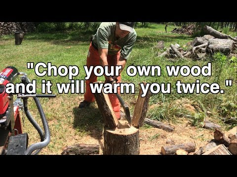 Did Henry Ford REALLY Say That About FIREWOOD?
