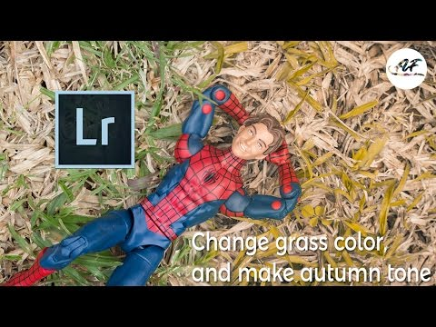 Lightroom Tutorial: Change Grass Color and Make Autumn Tone - ToyPhotography