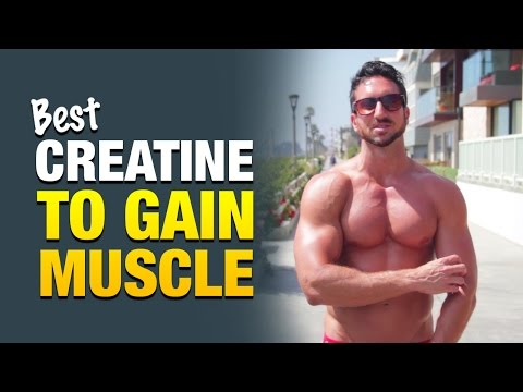 Best Creatine Supplement For Guys Who Want To Gain Weight & Build Muscle