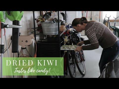 How to Make Dried Kiwi