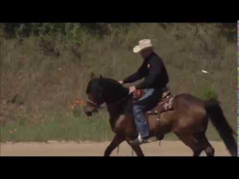 Handling the Emotional Horse - Under Saddle