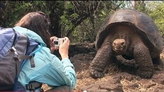 Explore The World Sweepstakes- Galapagos | Jeopardy!