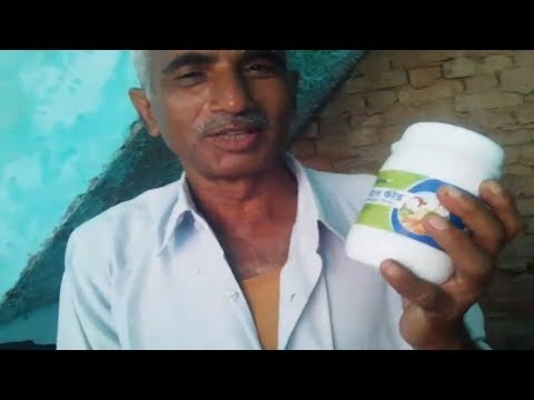 Netsurf Cfc Result On Milk Giving Animal