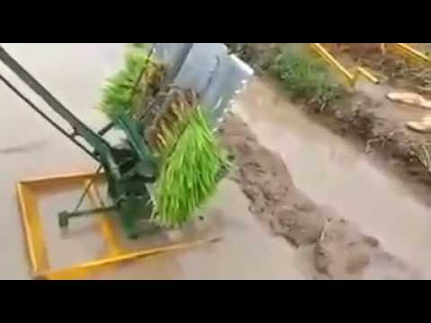 Manual Rice Planter. Pls Contact/Whats App +91-9634104040