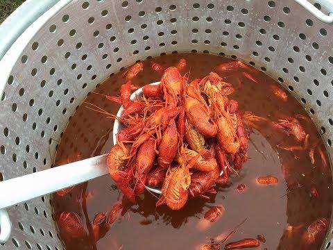 How To Steam Crawfish ~ Recipe