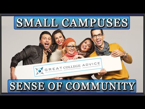 Educational Consultant on the Sense of Community on Small Campuses