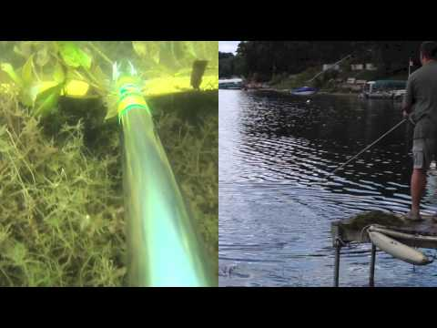 AMAZING Aquatic Weed Removal with The WeedGator!