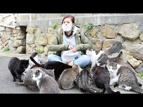 Girl Swarmed by Cats on Japan's Cat Island!