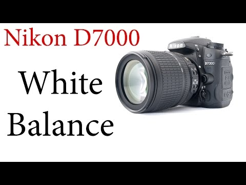 Nikon D7000: How to use Auto and Custom White Balance