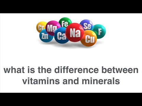 What is the Difference Between Vitamins and Minerals