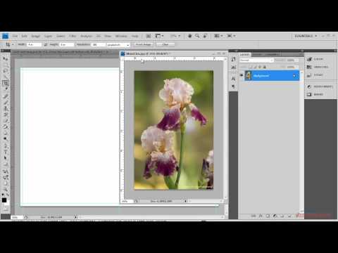 Epson - Inkjet printable cards setup Photoshop for PC for Epson Inkjet Printers (Vertical Images)