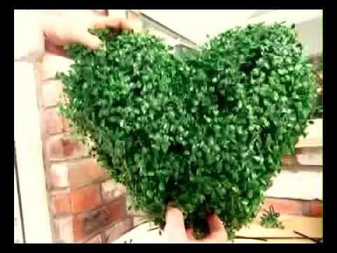 How to make a Topiary Heart