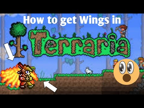 HOW TO GET WINGS IN TERRARIA|Terraria Android/IOS|