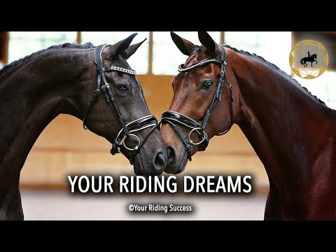Your Riding Dreams - Weekly Wrap Up 2 May 2018