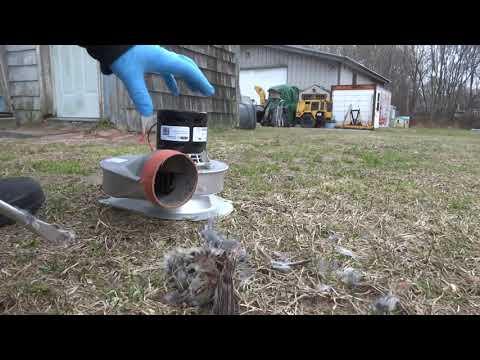 gas furnace no heat odd find