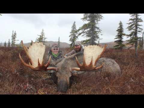 Alaskan Moose, Caribou & Grizzly Hunt Part 1