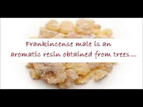 How to Lose Weight Fast Lose Belly Fat with this Magic Drink Frankincense Male  Water