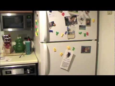 How To Fix Your Fridgidaire Refrigerator (if the compressor won't start)