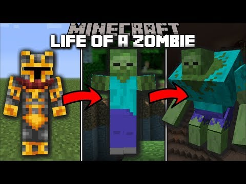 Minecraft LIFE AS A ZOMBIE MOD / FIGHT AND MUTATE MOBS WITH YOUR ZOMBIE APOCALYPSE!! Minecraft