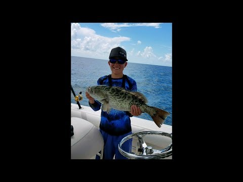 The BEST BAIT for Catching BIG Grouper?
