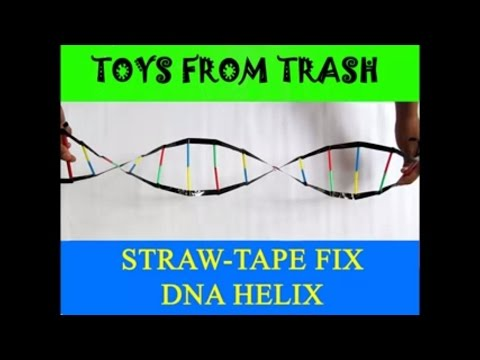 STRAW TAPE DNA HELIX - HINDI - DNA model!