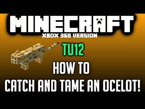 Minecraft TU12: How to catch and tame an Ocelot! (Xbox 360)