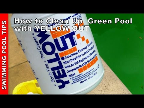 How to Clean a Green Pool Updated Version - Using YELLOW OUT