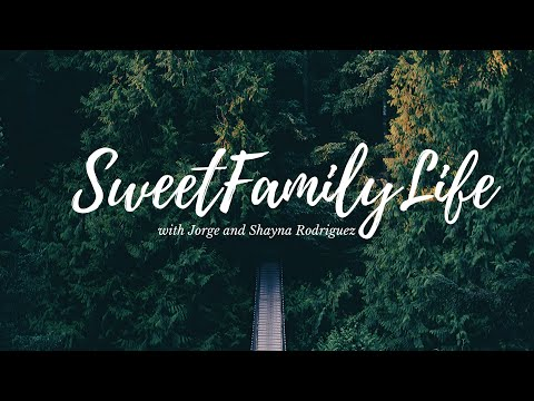 Getting Irish Passports!🇮🇪 #SweetFamilyLife  Lehigh Valley Family Vlog
