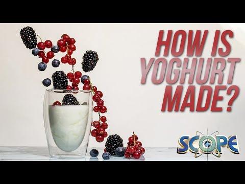 Scope: Yoghurt Factory