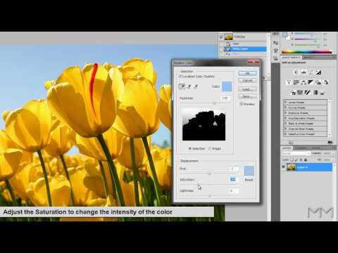 Photoshop CS5 - Replace Color Tutorial