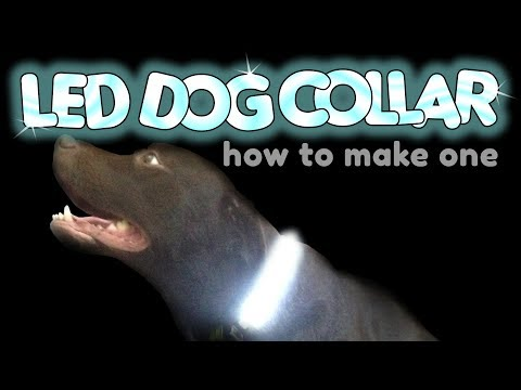 How to make an LED Dog Collar by VegOilGuy