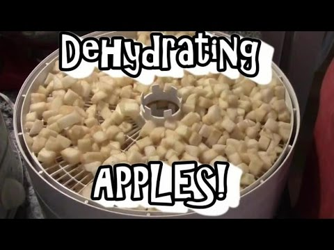 Dehydrating Apples!