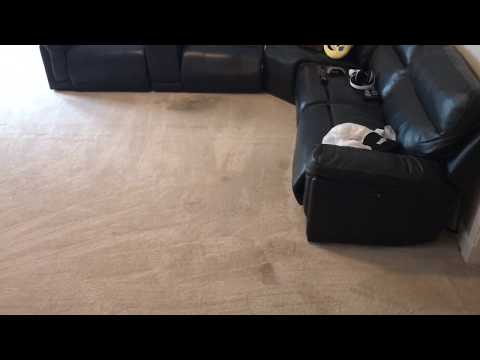 How to clean synthetic carpet Atlanta 404-914-3103