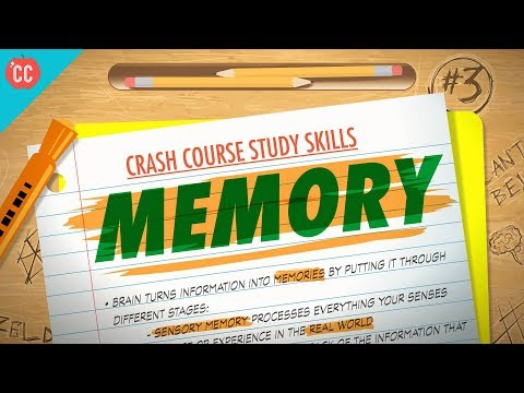 Memory: Crash Course Study Skills #3