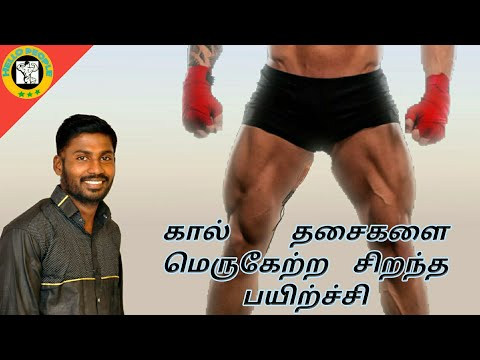 BEST LEG WORKOUT AT HOME IN HELLO PEOPLE|| TAMIL