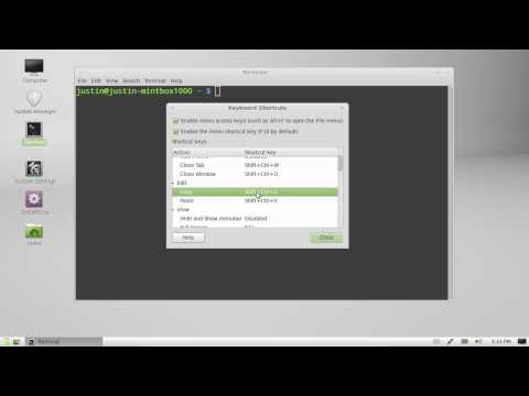 copy and paste keyboard shortcuts for linux mint 13 terminal