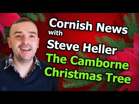 The Worst Christmas Tree in the UK
