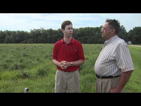 Vegetative Treatment System for Larger Feedlots