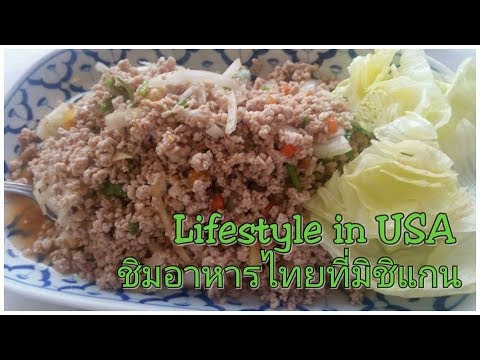 Lifestyle in USA ทริปมิชิแกนไปชิมอาหารไทย