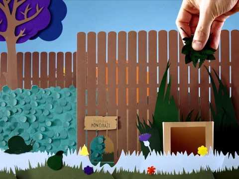 How to make a hedgehog friendly garden