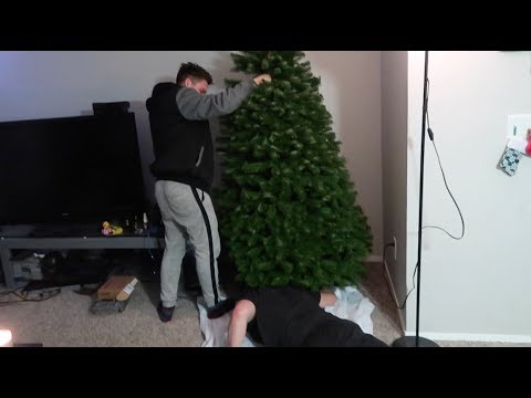 Death by Christmas tree | Vlog 99