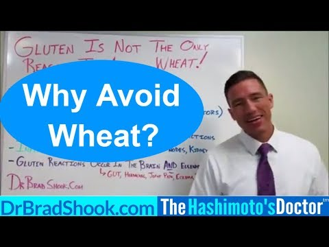 Celiac Disease? Food Sensitivity to Wheat? Gluten is not the only Reason to Avoid Wheat