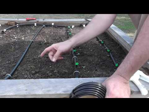 Installing a Drip Irrigation System for Raised Beds