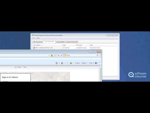 How it works: Internet Explorer Password Recovery Master