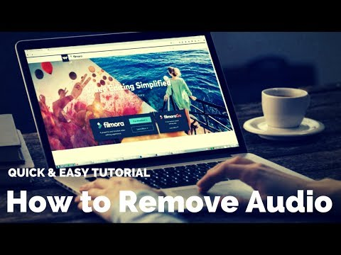 How to Remove Audio or Noise from Video