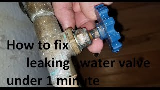 Download How to fix leaking water valve under 1 minute without replacing it Video