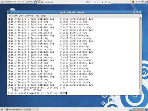 linux globbing tutorial