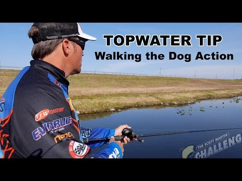 "Exclusive Topwater Fishing Tip: How to ""Walk the Dog"""