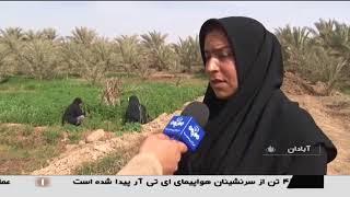 Iran Women working in agriculture fields, Abadan villages زنان كارگر زمين كشاورزي روستاهاي آبادان